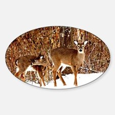 Deer - Doe and Fawn Decal
