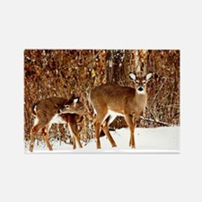 Deer - Doe and Fawn Rectangle Magnet