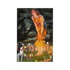 Fairies & Boston Terrier Rectangle Magnet