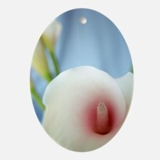 White Calla Lily Swirl Art Ornament (Oval)