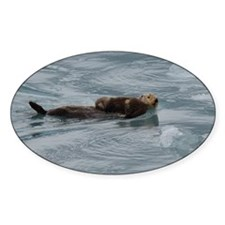 sea otter and baby Decal
