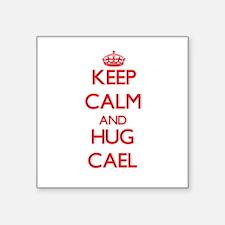 Keep Calm and HUG Cael Sticker