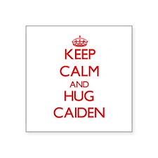 Keep Calm and HUG Caiden Sticker