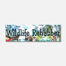 Funny Animals wildlife Car Magnet 10 x 3