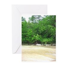 Greeting Cards (Pk of 10) (BLANK)