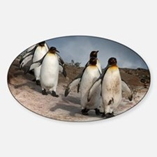 March of the Penguins Sticker (Oval)