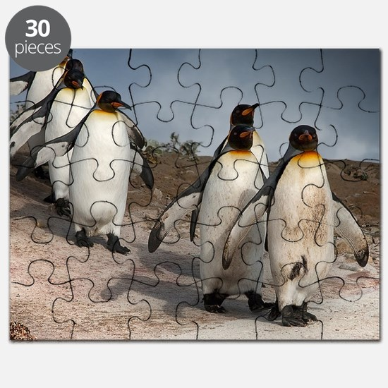 March of the Penguins Puzzle