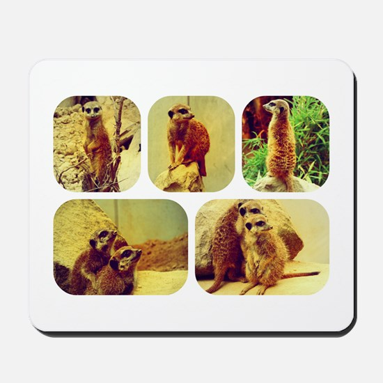 Meerkat Collage Mousepad