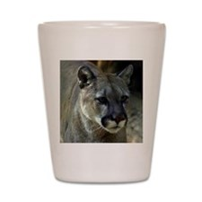 Young Cougar Shot Glass