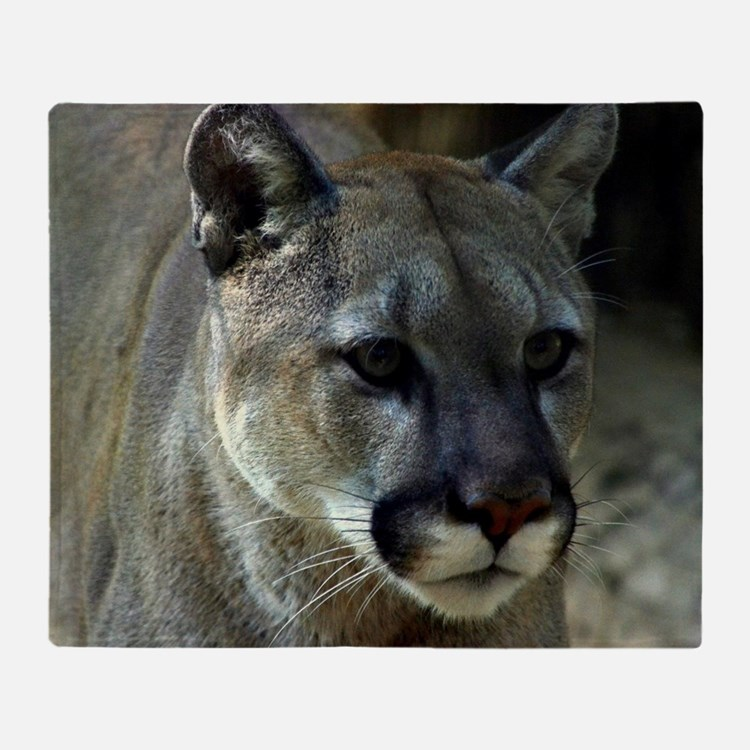 Young Cougar Throw Blanket