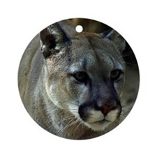 Young Cougar Round Ornament