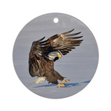 Eagle landing in snow Ornament (Round)