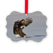 Eagle landing in snow Ornament