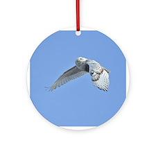 Snowy flying Ornament (Round)