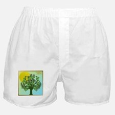 12 Tribes Israel Asher Boxer Shorts