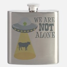 WE ARE NOT ALONE Flask