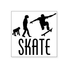 Skate Evolution Sticker