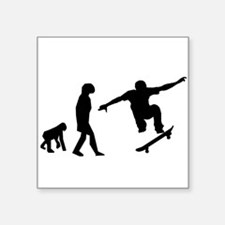 Skateboard Evolution Sticker