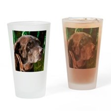 Chocolate Lab Buddy Drinking Glass