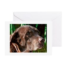 Chocolate Lab Buddy Greeting Cards (Pk of 10)
