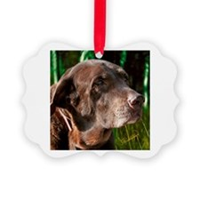 Chocolate Lab Buddy Ornament
