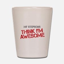Stepsons Awesome Shot Glass