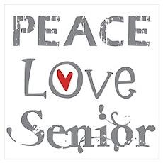 Peace Love Senior Poster