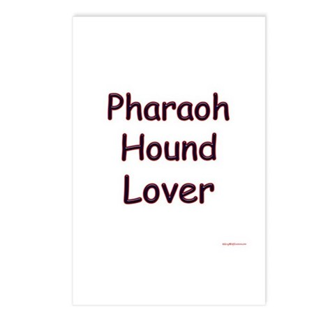 Pharaoh Hound Lover Postcards (Package of 8)