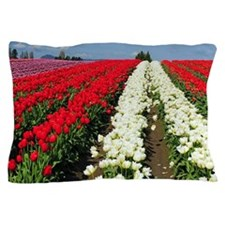 Colorful rows of spring tulips Pillow Case
