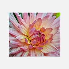 Beautiful pink dahlia Throw Blanket