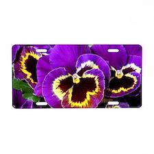 Beautiful purple pansy Aluminum License Plate