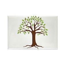 Oak Tree Magnets