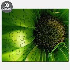 Green Daisy Puzzle