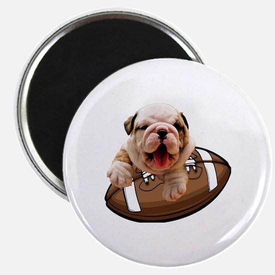 Unique Bulldogs Magnet