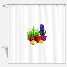 norooz 1 Shower Curtain