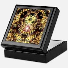 DMT Shaman Visions Keepsake Box