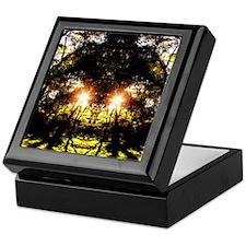 DMT Ferntree Forest Keepsake Box