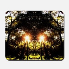 DMT Ferntree Forest Mousepad