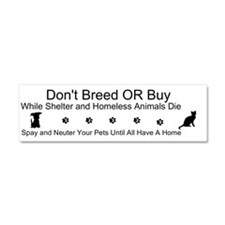 Cute Animal rights Car Magnet 10 x 3