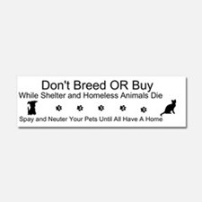 Cute Cats cats and more cats Car Magnet 10 x 3