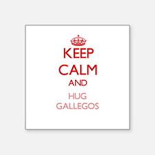 Keep calm and Hug Gallegos Sticker