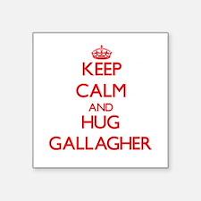 Keep calm and Hug Gallagher Sticker