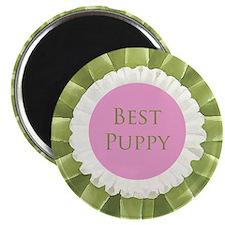 Best Puppy Magnet
