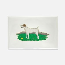 Jack Russell Rectangle Magnet