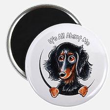 """Dachshund Longhair B/T IAAM 2.25"""" Magnet (10 pack)"""