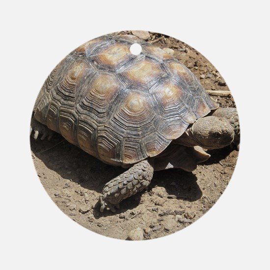CALIFORNIA DESERT TORTOISE Round Ornament