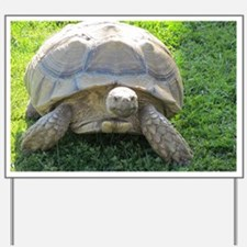 SULCATA TORTOISE Yard Sign