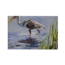 Ibis in Grassy Marsh Magnets