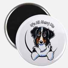 "Bernese Mountain Dog IAAM 2.25"" Magnet (10 pack)"