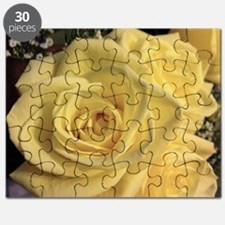 A Yellow Rose Puzzle